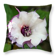 Double Purple Datura Throw Pillow