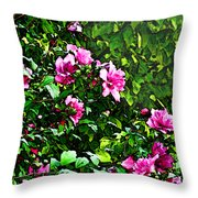 Double Rose Of Sharon Throw Pillow