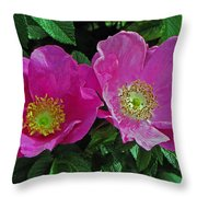 Double Wild Rose Throw Pillow