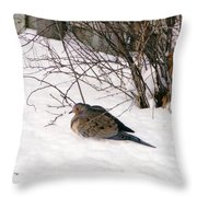 Dove In The Snow Throw Pillow