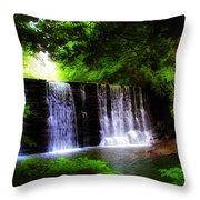 Dove Lake Falls Throw Pillow