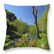 Dove Valley - Beside The River Throw Pillow