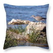Dowitcher Throw Pillow