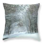 Down A Winter Road Throw Pillow
