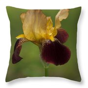 Down Home Two-tone Iris Throw Pillow