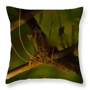 Down In The Deep Throw Pillow