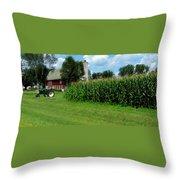 Down On The Wisconsin Farm Throw Pillow