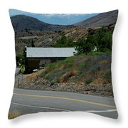 Down The Silver Road Throw Pillow