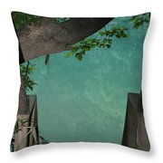 Down To The Creek Throw Pillow