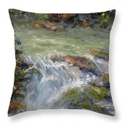 Downstream Throw Pillow