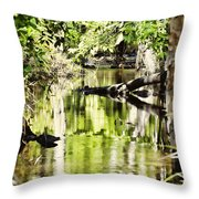 Downstream Reflections Throw Pillow