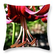 Downward Trends Throw Pillow