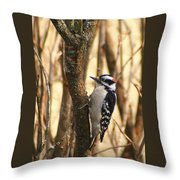 Downy In The Bushes Throw Pillow