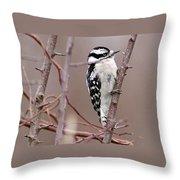 Downy Woodpecker 1 Throw Pillow