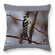 Downy Woodpecker 7 Throw Pillow