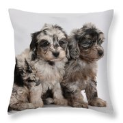 Doxie-doodle Pups Throw Pillow