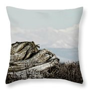 Dozing With Mount Baker Throw Pillow