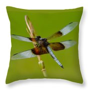 Dragon Fly Green Throw Pillow