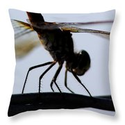 Dragon On The Wire Throw Pillow