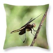 Dragonfly - Yellow Stripe Throw Pillow