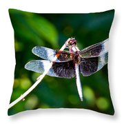 Dragonfly 0002 Throw Pillow