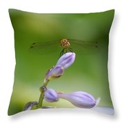 Dragonfly Connection Throw Pillow