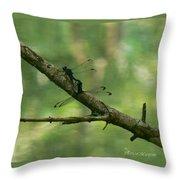 Dragonfly Hanky Panky Throw Pillow