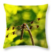 Dragonfly In Green Throw Pillow