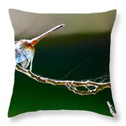 Dragonfly In The Wind Throw Pillow