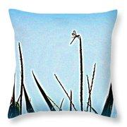Dragonfly Magic Throw Pillow