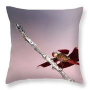 Dragonfly On A Pastel Sky Throw Pillow