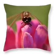 Dragonfly On Pink Flower Throw Pillow