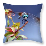 Dragonfly Visit Throw Pillow