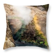 Dragon's Mouth Throw Pillow