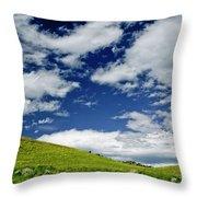 Dramatic Big Sky Throw Pillow