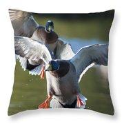 Dramatic Ducks Throw Pillow