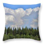 Dramatic Sky Marshall Lake Throw Pillow