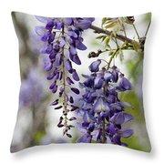 Draping Lavender Purple Wisteria Vines Throw Pillow