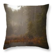 Dream Of Autumn Throw Pillow by Mike Reid