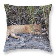 Dreaming Of Birds Throw Pillow