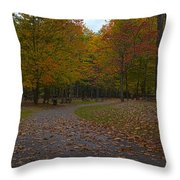 Dreaming Of Picnickers Throw Pillow