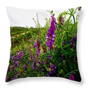 Dreaming Of Summer Throw Pillow