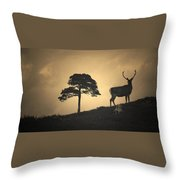 Dreaming Of Tomorrow Throw Pillow