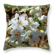 Dreams Of Pear Blossoms Throw Pillow