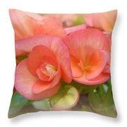 Dreamy Begonias Throw Pillow