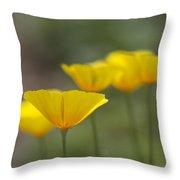 Dreamy California Poppies - Eschscholzia Californica Throw Pillow