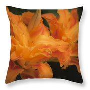 Dreamy Kwanso Daylily Pair Throw Pillow