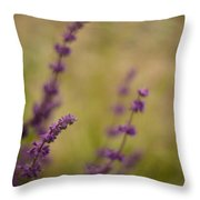 Dreamy Purple Throw Pillow