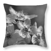 Dreamy Spring Blossoms In Black And White Throw Pillow
