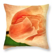 Dreamy Vintage Tulip Throw Pillow